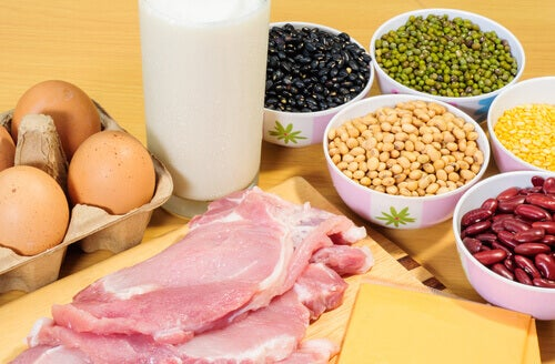A collection of protein high foods.