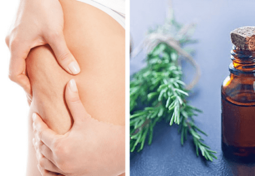 rosemary extract fights cellulite