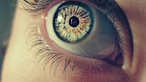 7 Strange Facts about Your Pupils