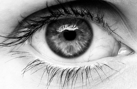 Silmä ja pupilli