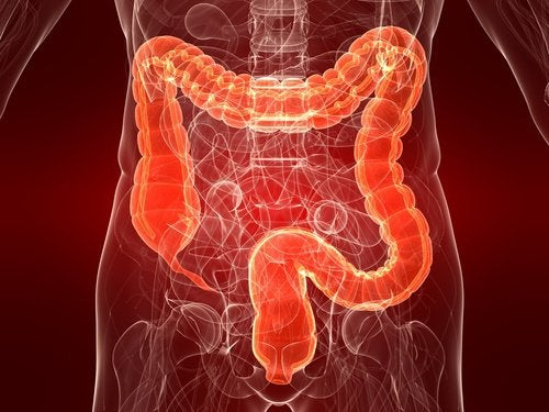 ulcerative colitis: causes, symptoms, and treatment - step to health, Skeleton
