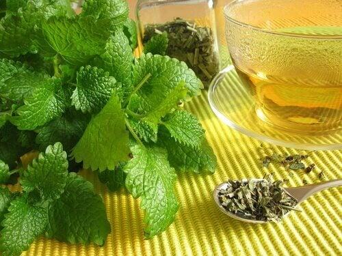 2 mint tea