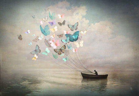 4 butterflies and boat