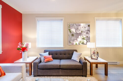 How to keep the living room of your house non-allergenic.