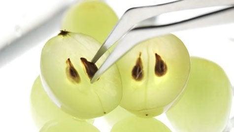 Vihreät viinirypäleet