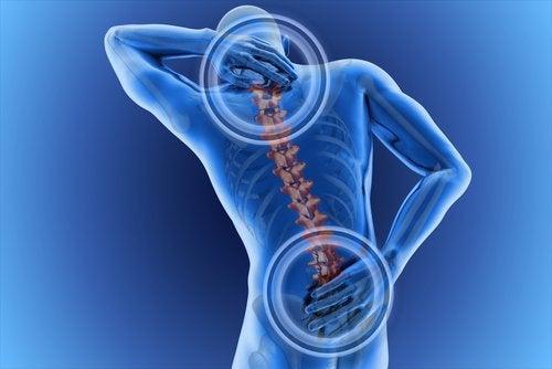 5 back pain