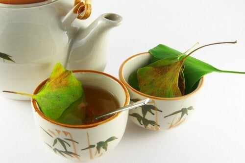 Cups of ginko tea