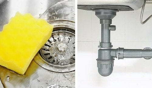 Simple, Natural Trick to Eliminate Drain and Pipe Odor