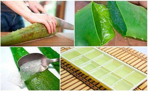The Best Ways to Store Aloe Vera Gel