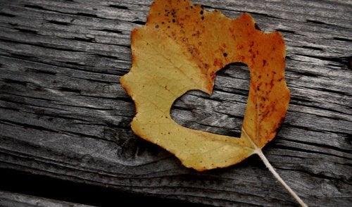 3 heart leaf