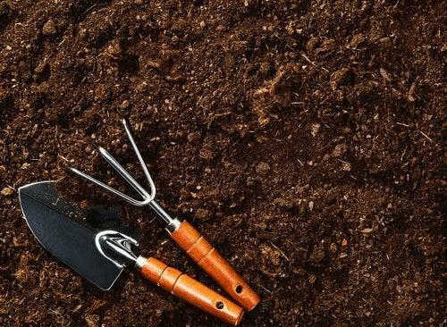 3 planting tools