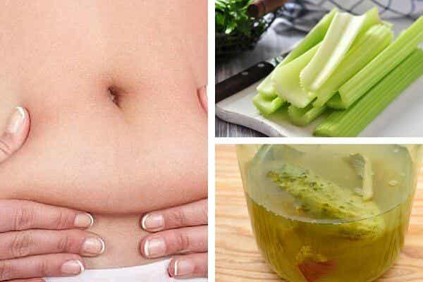 Try this Celery Tea Recipe for Weight Loss!