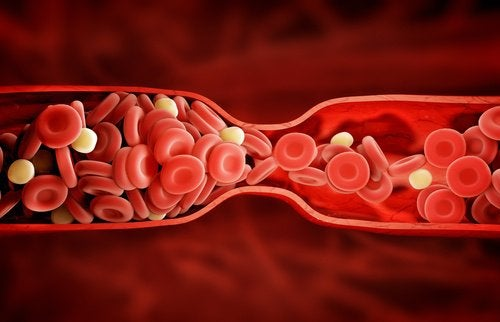 atrovastatin medication for cholesterol