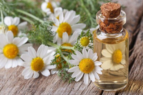 chamomile massage