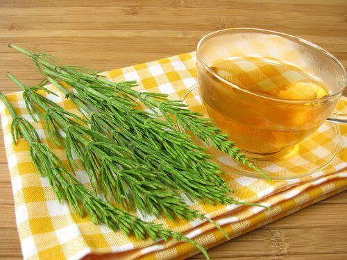 Horsetail tea to lower blood pressure
