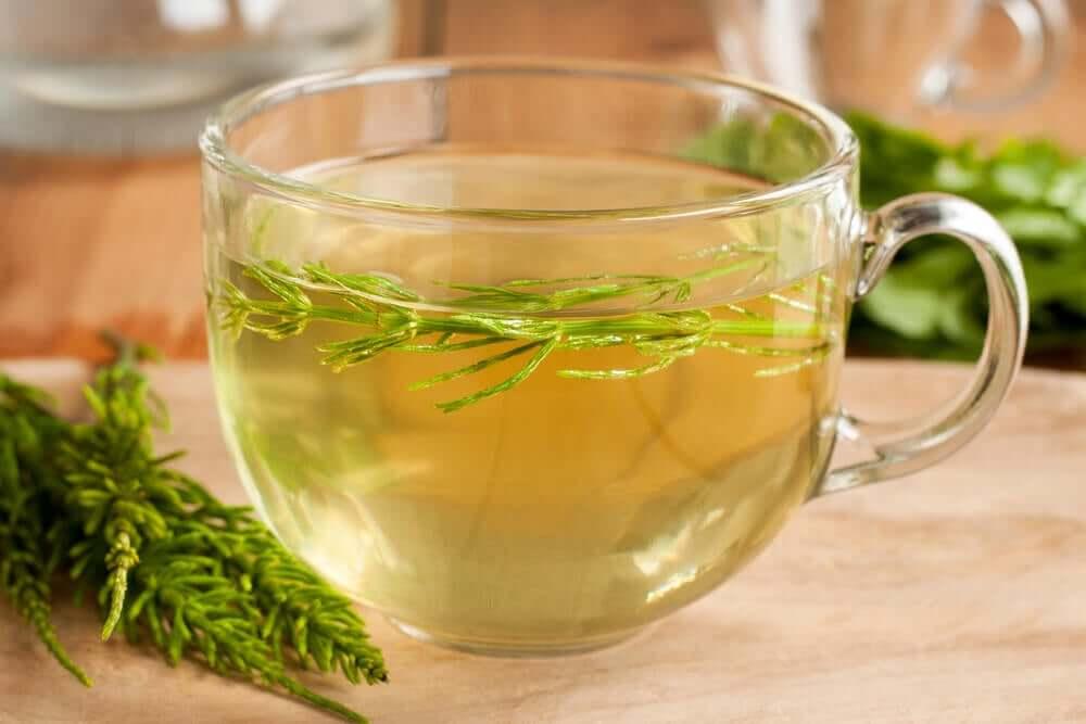 Horsetail grass tea.