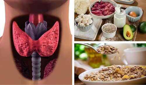 Fight Hypothyroidism