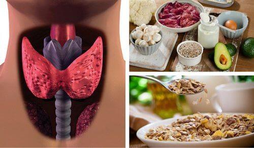 Fight Hypothyroidism