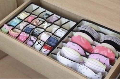 12 underwear