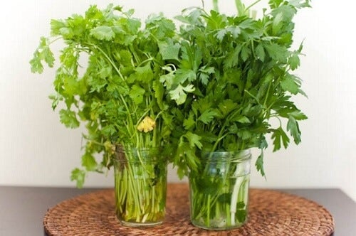 2 fresh herbs