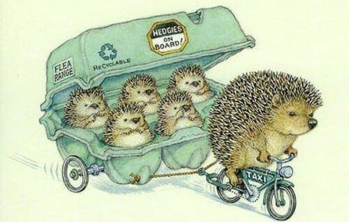 2 hedgehog family