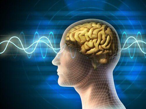 4 brain waves