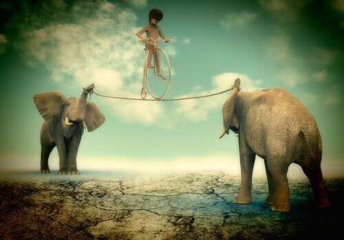 A boy walking a tightrope between two elephants.