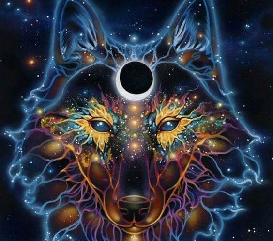 image of wolf constellation