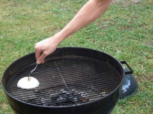 Cleaning a grill with an onion