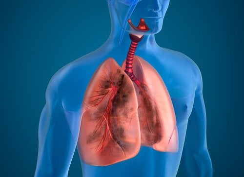 Cleanse Smoker Lungs