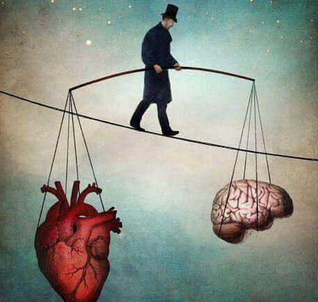 2 heart and brain