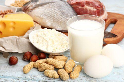 단백질을 더 많이 섭취하자