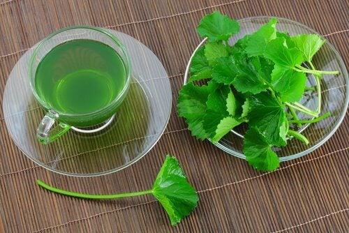 4 parsley tea
