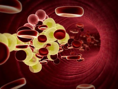 4 red blood cells