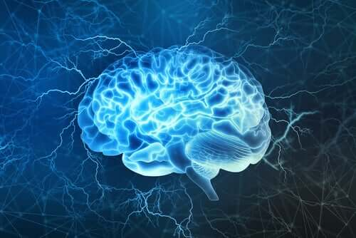 A lit brain during physical activity.