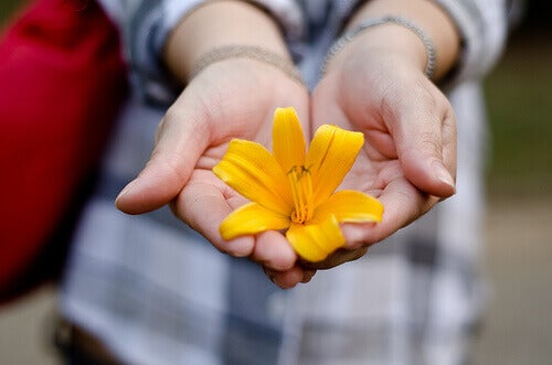 Person holding a yellow flower in both hands leukemia cells hope