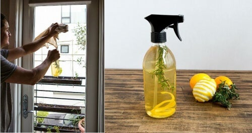 lemon-peel-air-freshener