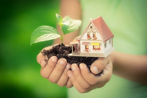 organic home management
