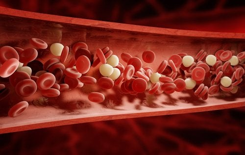 symptoms of hypocalcemia in the blood