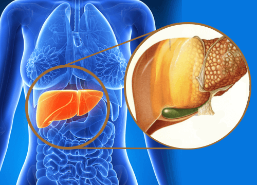 9 Warning Signs that Toxins are Accumulating in Your Liver