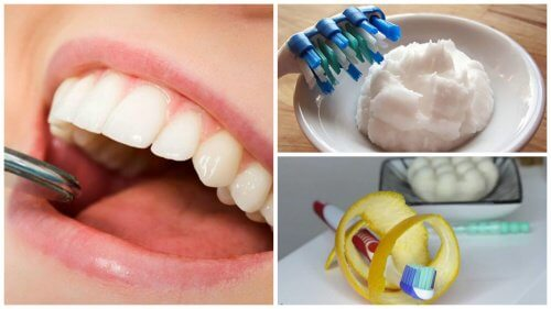 5 Home Remedies to Remove Plaque From Your Teeth