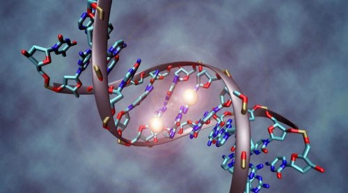 Is Cancer Hereditary? What You Need To Know