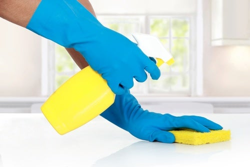 Multi-purpose borax cleaner