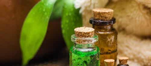 Tea Tree Oil: The Oil of a Thousand Remedies