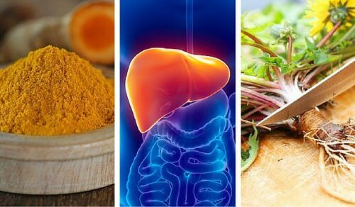 These are the 6 Best Herbs to Protect Your Liver