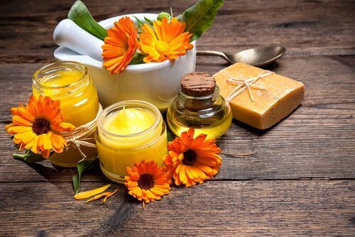 3-homemade-creams to heal cuts and scars