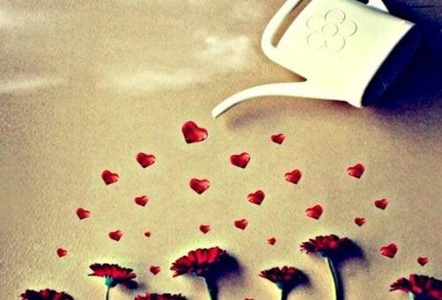 Kukkien kastelu sydämin