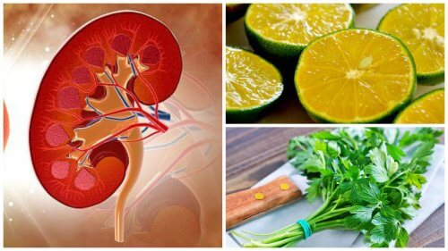 Lemon and Parsley Syrup to Eliminate Kidney Stones