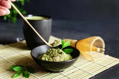 What Happens to Your Body if You Drink Green Tea Every Day?