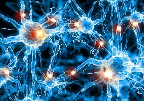 Early Detection of Alzheimer's Through Speech